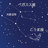 ho_43.jpg
