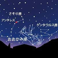 ho_53.jpg