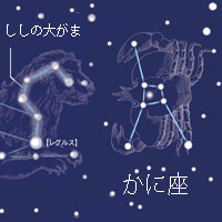 h_14.jpg