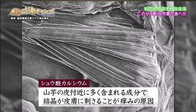 mitsuboshi.jpg
