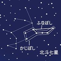 ho_63.jpg